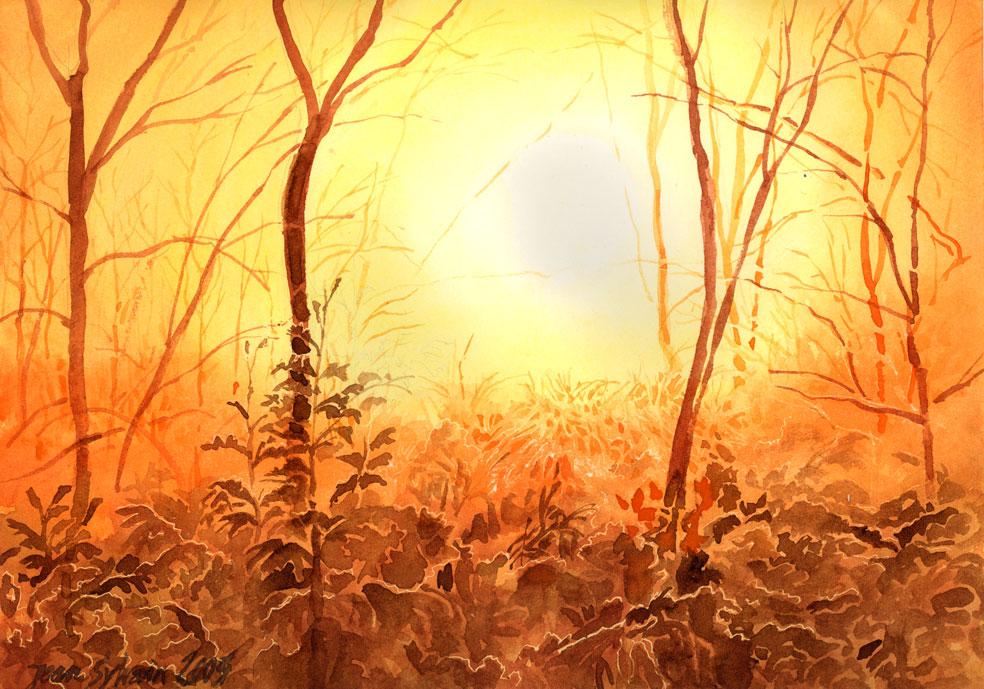 aquarelle, lever de soleil dans la forêt enneigée
